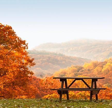 őszipad