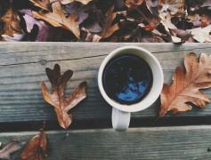kave-levelek