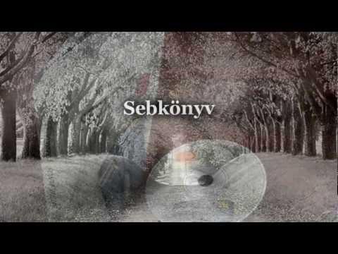 sebkonyv