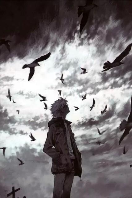 Férfi feklete madarak