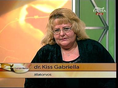 DUNA TV fekvő KG
